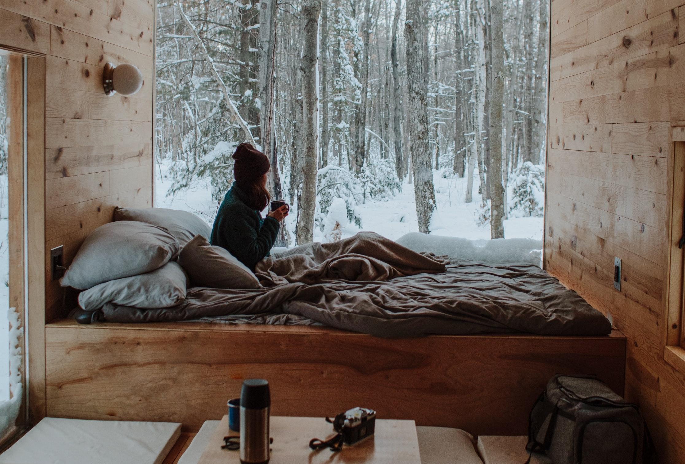 bed room forrest